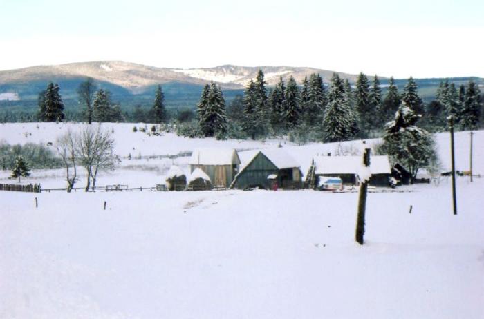 Téli táj Fenyőkúton